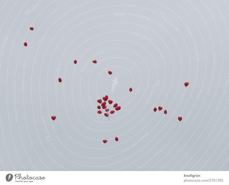 27 rote Herzluftballons die gen Himmel fliegen Luftballon Liebe Gefühle Romantik Verliebtheit Valentinstag Glück Sympathie Zeichen Lebensfreude Tag Farbfoto