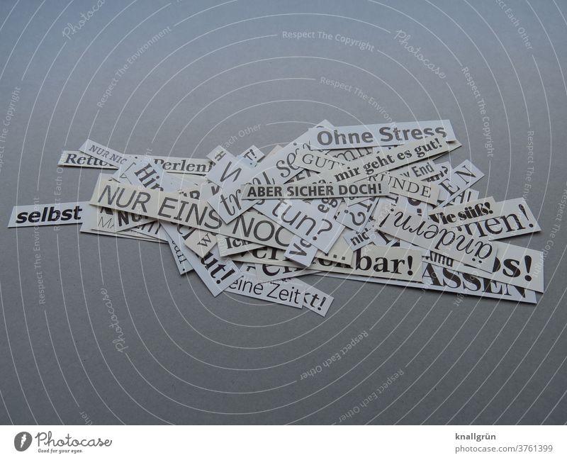 Ein Haufen ausgeschnittener Worte Kommunizieren Mitteilung Schriftzeichen Text Buchstaben Kommunikation Typographie Sprache Menschenleer Farbfoto Verständigung