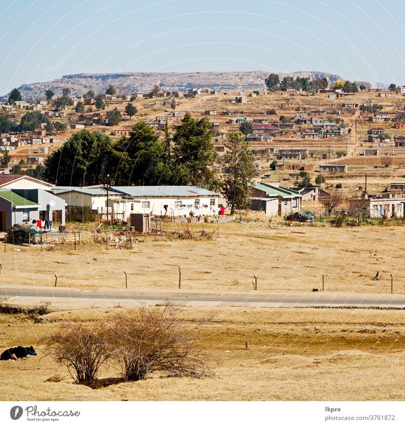 in der südafrikanischen Altstadt in der Nähe des Berges Afrika clarens Süden Feld Landschaft Berge u. Gebirge Bäume Himmel Herbst weiß Sommer Umwelt schön ruhig