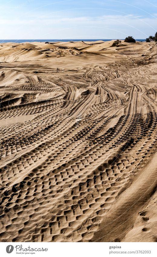 Reifenspuren im Sand der großen Düne auf Gran Canaria Umwelt Kanaren Kanarische Inseln Spanien Landschaft Natur Ferien & Urlaub & Reisen Tourismus Außenaufnahme