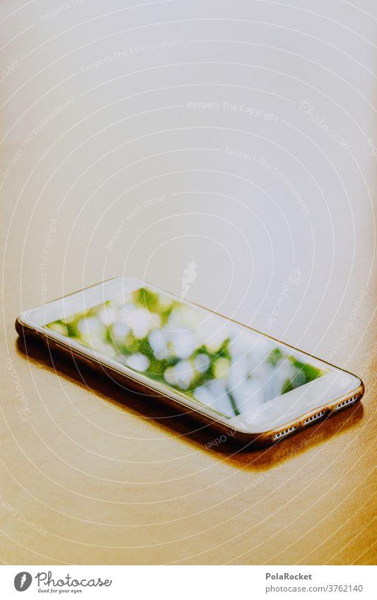 #A# Handyfoto von Sommer-Reflektionen auf dem Mobiltelefon III Zukunft nachhaltiges Leben nachhaltiger Lebensstil Nachhaltigkeit grün Pause liegen Tisch