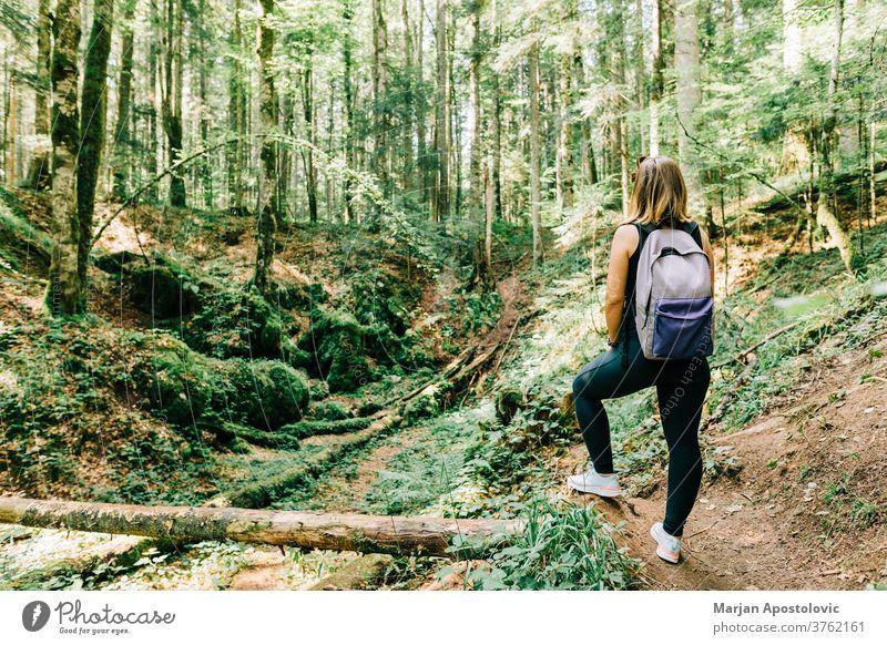 Junge Naturforscherin im Wald aktiv Abenteuer allein Rücken Rucksack Backpacker schön Fundstück Europa erkunden Entdecker Frau Laubwerk Freiheit Mädchen grün