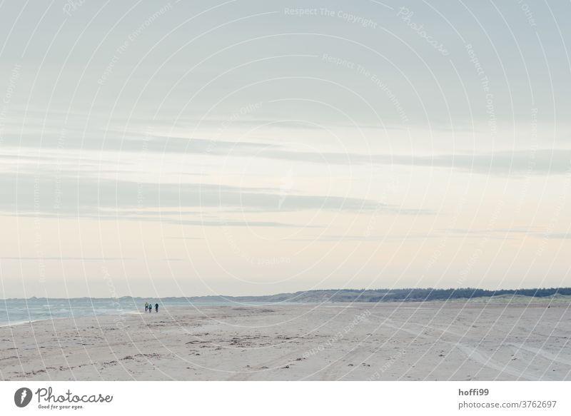 die Spaziergänger verschwinden in der Ferne - Tag am Meer Strand Sand Wattenmeer Nordsee Wasser Erholung Küste Wellen Gezeiten Flut Gischt seicht Landzunge