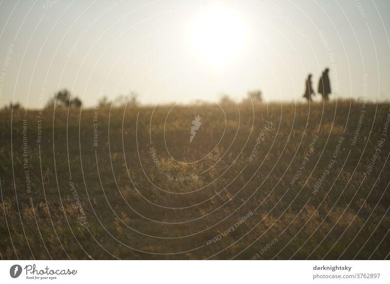 Spaziergang bei Sonnenuntergang Wandern spazieren Außenaufnahme Farbfoto Erholung Mensch wandern Natur Landschaft Erwachsene Umwelt Frau Sommer Wege & Pfade Tag
