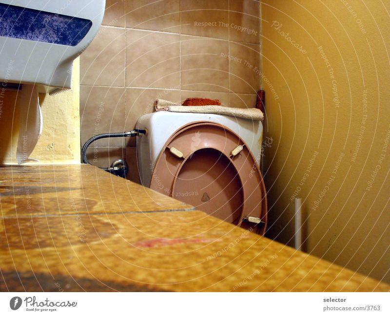 cybercafe Toilette Wissenschaften Café Sonnenbrille Video