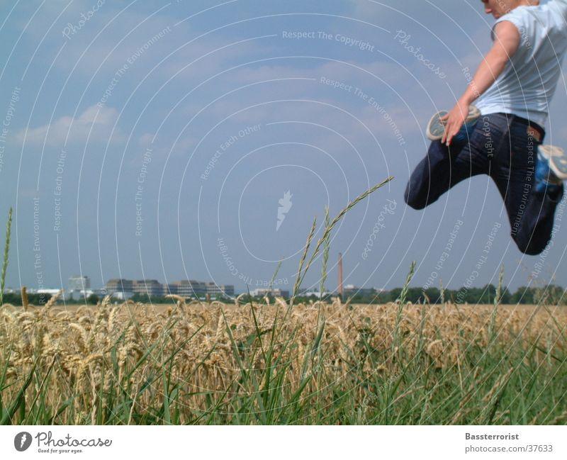 Just Fly Kornfeld Sommer springen Mann Blauer Himmel fliegen