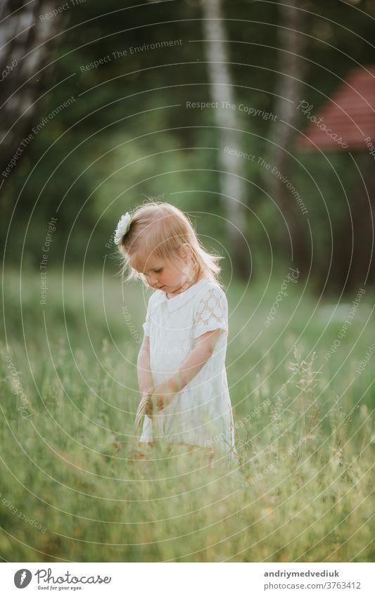 kleines süßes Mädchen mit Korb im weißen Kleid viel Spaß im Park Kind jung Sommer Fröhlichkeit Familie Anziehungskraft Sommerfest Hintergrund schön Kaukasier