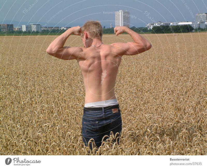 Nice back Mann Feld Rücken Körperhaltung Muskulatur