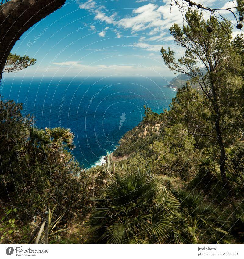 Aussicht Himmel Natur Ferien & Urlaub & Reisen Pflanze Sommer Baum Meer Blatt Landschaft Ferne Wald Umwelt Küste Freiheit Horizont Tourismus