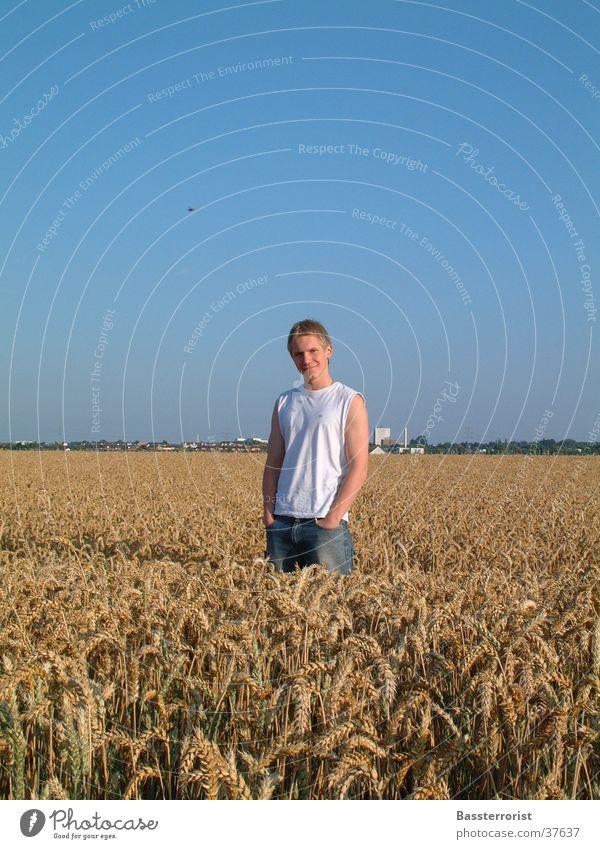 Sommertag Mann Feld . Sommer Jeanshose Sonne