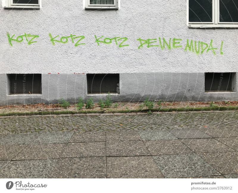 Wenn dir mitten im Streit die Argumente ausgehen... Graffiti, gesehen in Berlin: Kotz, kotz, kotz... deine Mud(d)a. Foto: Alexander Hauk diskussion mutter