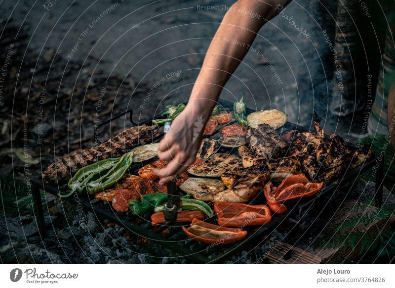 Gegrilltes Gemüse, Hühner- und Schweinefleisch in einem rustikalen Grill im Freien. farbenfroh Biografie saisonbedingt Lebensmittelgeschäft Bioprodukte Saison
