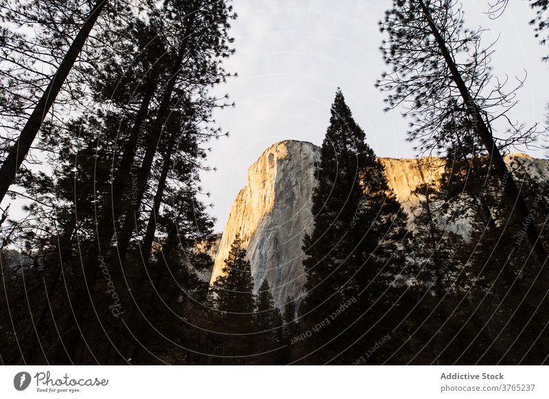 Bergkamm gegen bewölkten blauen Himmel Berge u. Gebirge Ambitus rau nadelhaltig Wald majestätisch Landschaft malerisch Kamm Hochland USA Vereinigte Staaten