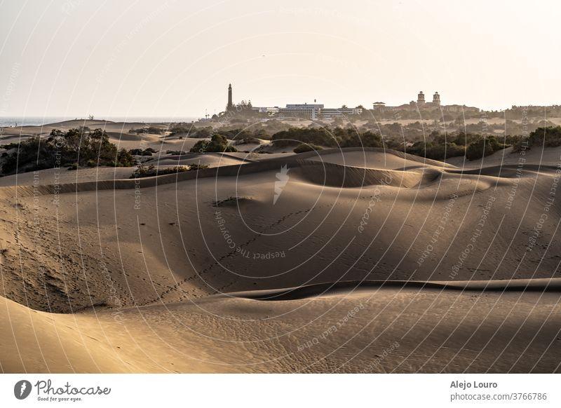 Sanddünen mit einer Stadt im Hintergrund und schönem goldenen Stundenlicht Sonnenuntergang wüst Gran Canaria Kanarische Inseln Dunes goldene Stunde Licht