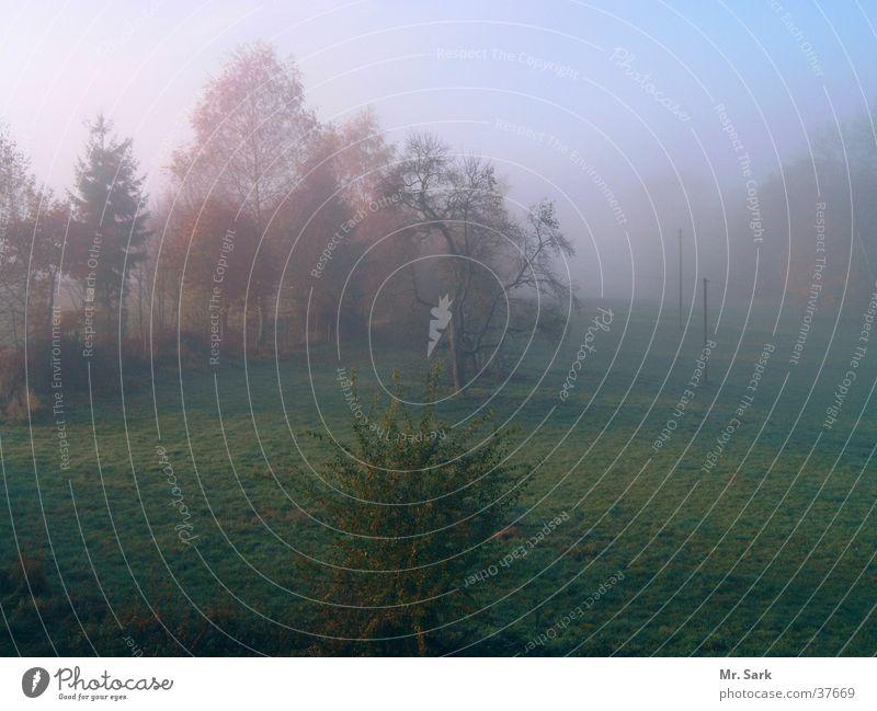 Herbstland Natur Sonne Feld Nebel