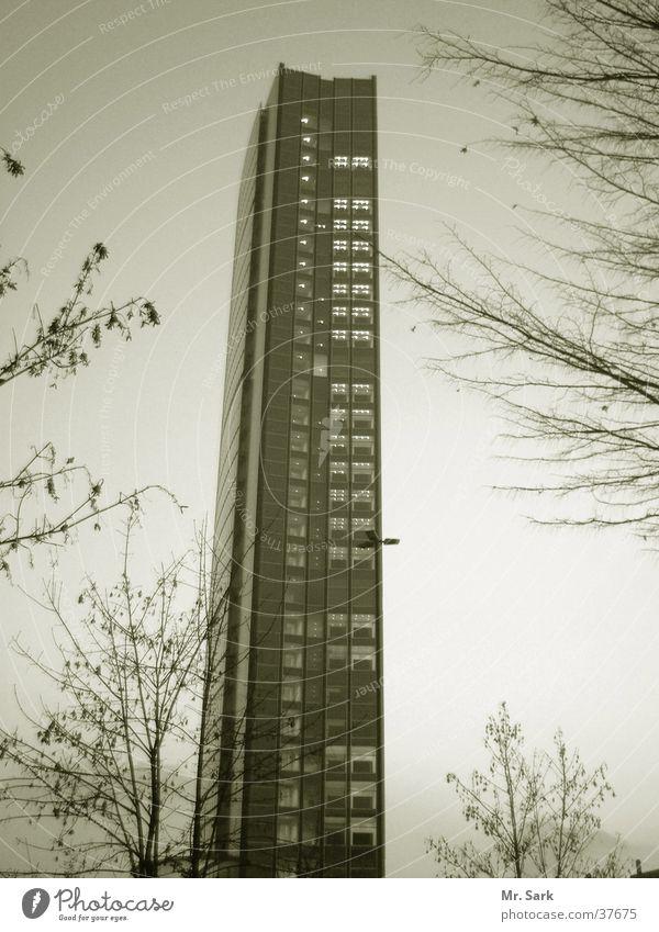 arag.hochhaus Baum Gebäude Architektur Hochhaus Düsseldorf