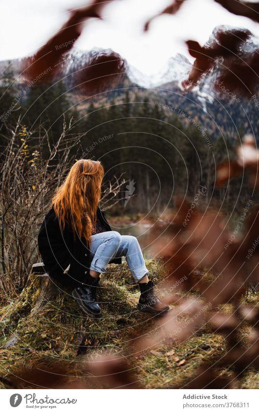 Einsame Frau bewundern Herbst Landschaft von See und Berge Berge u. Gebirge reisen Sitzen einsam Felsen Stein Gipfel Schnee Reisender Wald Windstille friedlich