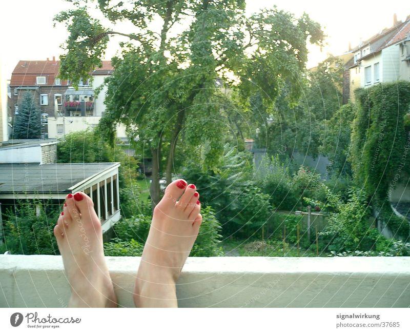 rote fussnägel Frau Baum Sommer Fuß Balkon Hinterhof Nagellack
