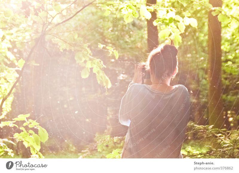 Eine Welt voller Magie feminin Junge Frau Jugendliche 1 Mensch Natur Pflanze Sonnenlicht Baum Wald Dutt beobachten genießen außergewöhnlich fantastisch schön