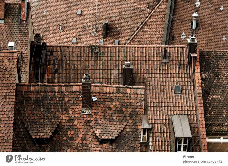 auf die Stadt herunterschauen Dachfirst Strukturen & Formen Dachfenster rot Bayern Franken Nürnberg First Giebel Dachgaube Gaube Süddeutschland Schornstein