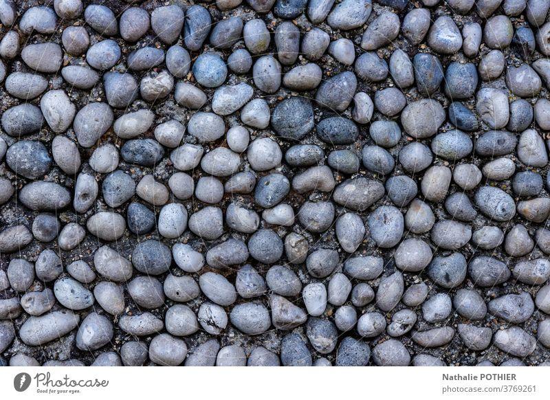 Kieselsteine im konkreten Hintergrund. Graue Farbe und Flachlage peebles Beton Textur flache Verlegung grau Wand Stein Oberfläche Muster Material natürlich