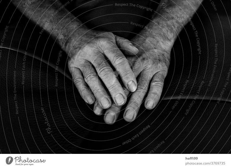 Hände Hand Person Menschen Nahaufnahme sitzend Finger faltig Mann Haut Erwachsener Porträt männlich altern