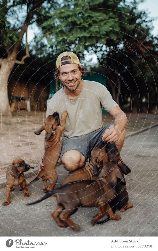 Lächelnder Mann mit niedlichen Welpen auf dem Lande Kraulen Rudel Hund Deutscher Jagdhund charmant Tier viele männlich züchten bezaubernd Haustier heimisch