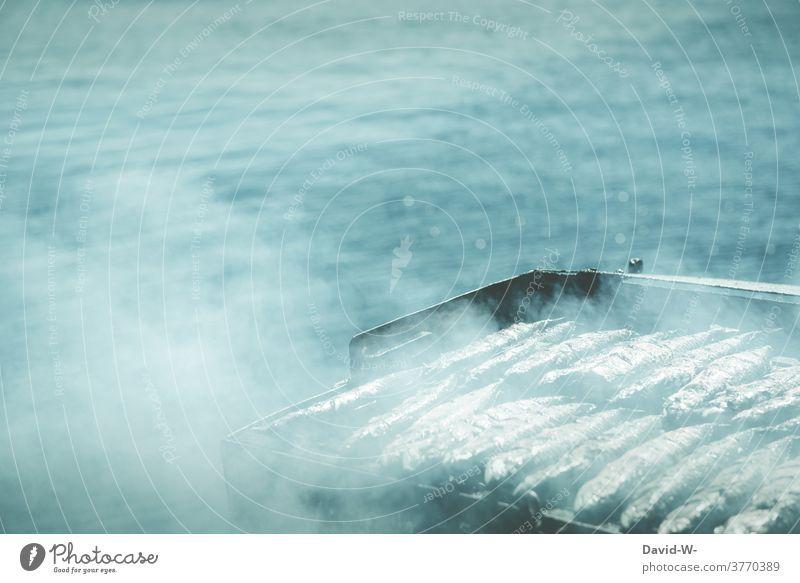Fisch auf dem Grill direkt am Meer Ozean Qualm grillen frisch Grillen Ernährung