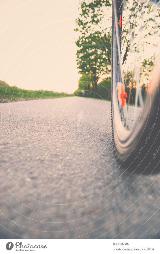 Fahrrad fahren - Rad auf der Straße Fahrradfahren Natur Bewegung Asphalt Reflektor Fahrradtour