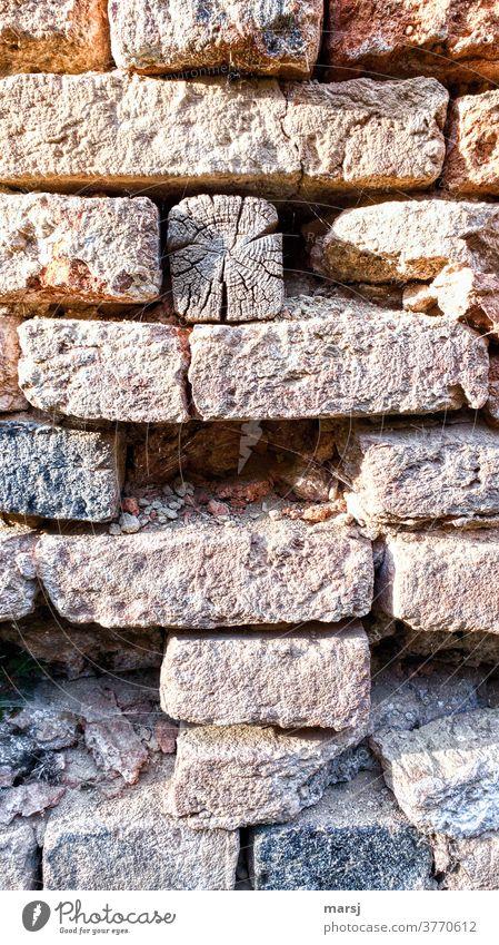 Verwittertes Kantholz in Ziegelmauer Mauer verwittert Verwitterung Verfall kaputt verfallen Vergänglichkeit alt Wand Farbfoto Strukturen & Formen