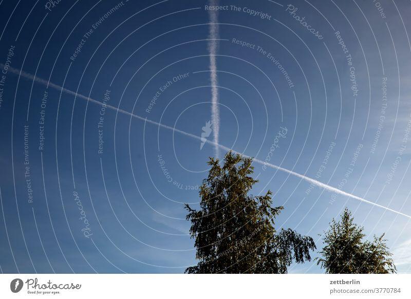 Kondensstreifen hinter Bäumen ferien landschaft natur sommer urlaub himmel flugzeug flugverkehr kondensstreifen chem tral chemical trail verschwörungstheorie X