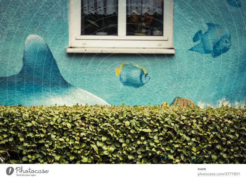 Haifischbecken mit biologischem Sichtschutz Hecke Fenster Fassade Architektur Lustig Fische Aquarium Zeichnung Stadt Haus Wand Gebäude Menschenleer Garten