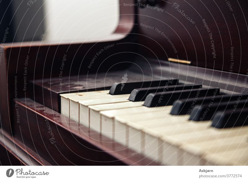 Klaviertasten verstaubt schön Handwerk Maschinenbau im Inneren Zeichenketten fummeln Kunst Musikinstrument Klangerzeugung stimmig Spielen Holz Klavierflügel