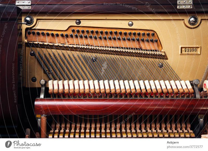 Innenseite des Klaviers musizieren Musik Keyboard Pianotastatur Konzert Klassik Farbfoto Innenaufnahme Musiker Klavier spielen Freizeit & Hobby Nahaufnahme