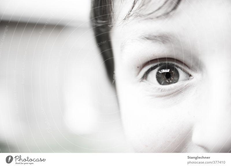 Weitblick Mensch maskulin Kind Junge Bruder Kopf Gesicht Auge Nase 1 8-13 Jahre Kindheit entdecken Blick träumen hell niedlich schwarz weiß Fröhlichkeit