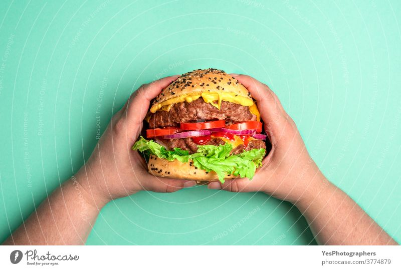 Burger mit beiden Händen gehalten. Hamburger auf grünem Hintergrund. obere Ansicht Barbecue grillen Rindfleisch groß Brot Brötchen Cheddar Käse Cheeseburger