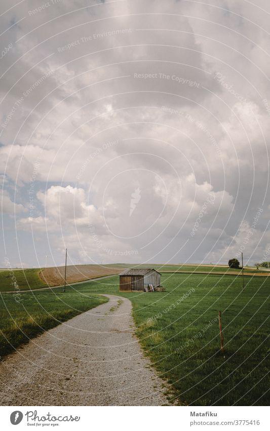 Feldweg Natur Landschaft Außenaufnahme Wiese Farbfoto Himmel Umwelt Menschenleer Gras grün Tag Sommer Wolken Wetter natürlich ländlich wandern Baden-Württemberg