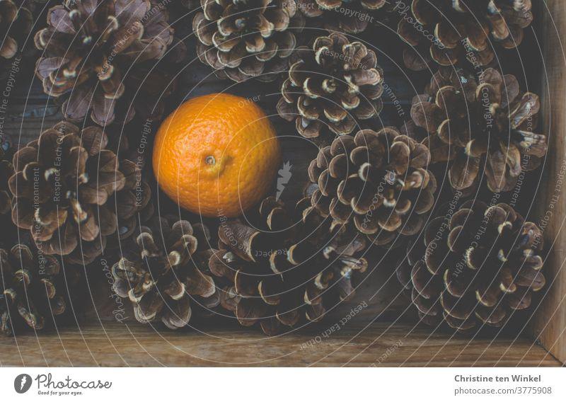 Blick von oben auf eine Holzkiste mit Kiefernzapfen und einer Mandarine Zapfen Clementine Zitrusfrucht Herbst Winter Advent Weihnachten Weihnachten & Advent