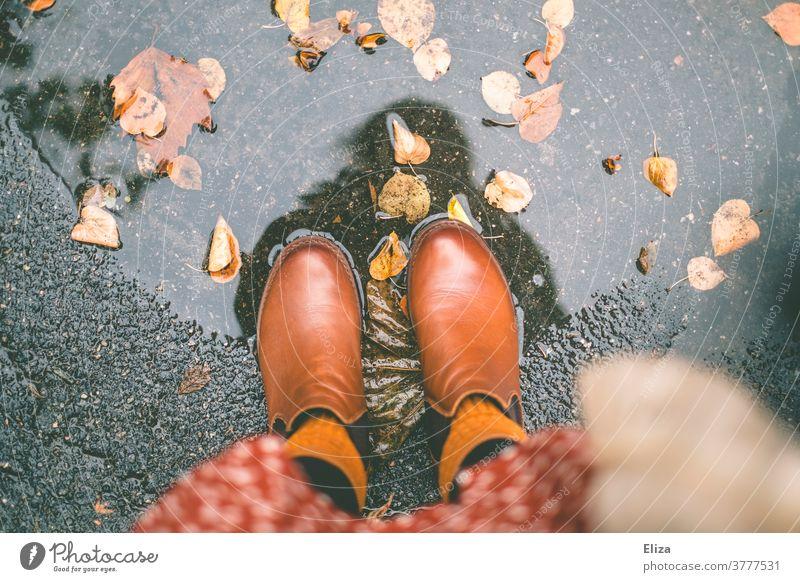 Herbst. Füße mit Stiefeln stehen in einer Pfütze mit Laub Herbstlaub Wasser Regen herbstlich nass Frau Kleid Herbstfarben Herbstfärbung Regenwetter