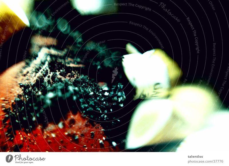 cigarettes Rauchen Dinge Rauch Zigarette Brandasche Zigarettenstummel