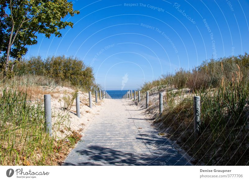 Weg zum Strand der Ostsee auf Usedom Küste Deutschland MEER Himmel baltisch Meer Insel Urlaub Sand Düne Gras Horizont Landschaft Sommer Wasser blau Feiertag