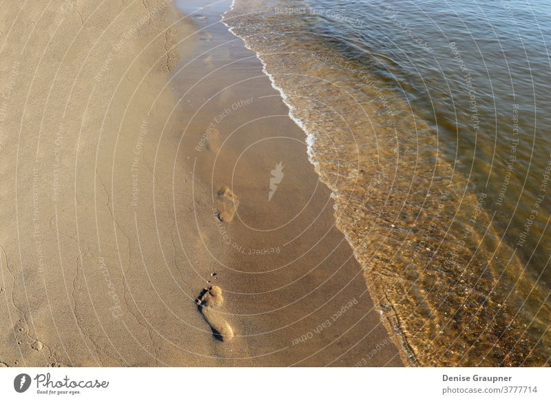 Fussabdrücke im Sand an der Ostsee Usedom Strand Urlaub baltisch Natur MEER Sommer Wasser Sonne Küste Ufer Himmel Spaziergang Meer Landschaft reisen Fußspuren