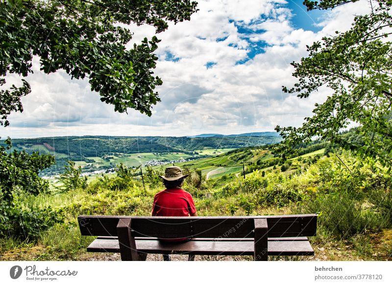 ausblicke Hunsrück Flussufer Rheinland-Pfalz Weinbau Ruhe Moseltal Idylle Landschaft Natur Außenaufnahme Weinstock wandern Sohn Umwelt Mosel (Weinbaugebiet)