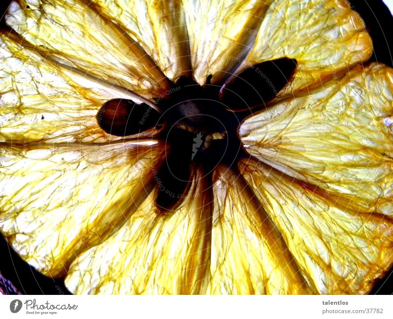 zitrone gelb Gesundheit Frucht Zitrone