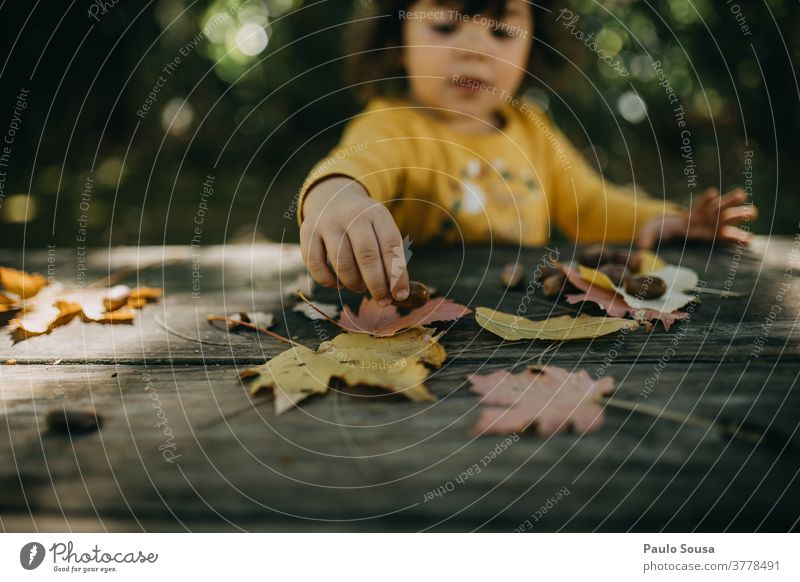 Mit Herbstblättern spielendes Kind Kindheit Herbstlaub fallen Herbstfärbung herbstlich Herbstbeginn Tag Außenaufnahme Sonnenlicht Baum Farbfoto Zweige u. Äste