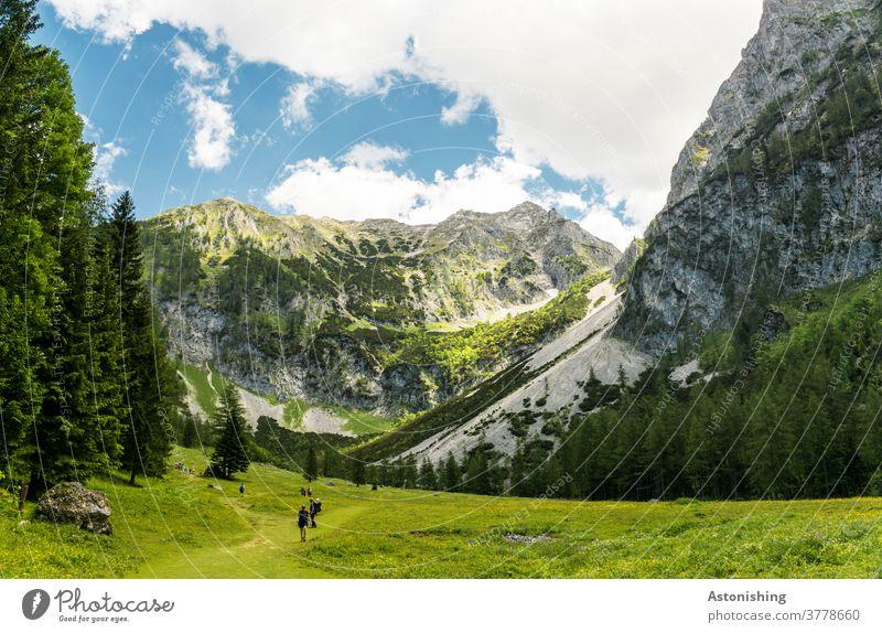 Wandern in den Alpen Berg Gipfel Pyhrgas Wiese wandern Österreich Felsen hoch steil hinauf Tal Baum Wald Himmel Aussicht Wolken Natur Landschaft Stein