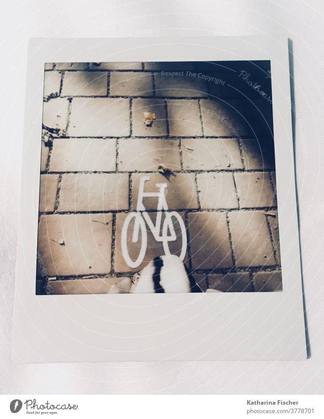 Polaroid // Radweg straße asphalt markierung fahrbahnmarkierung hinweis zeichen wegzeichen Herbst linie Farbfoto Farbe weiß Asphaltstraße Wege & Pfade Blätter
