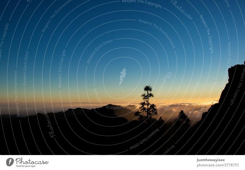 wunderschöner Sonnenuntergang am Teide Landschaft Wolken Sonnenaufgang Berge u. Gebirge Sonnenlicht Insel Teneriffa Spanien el teide sorgenfrei Natur reisen