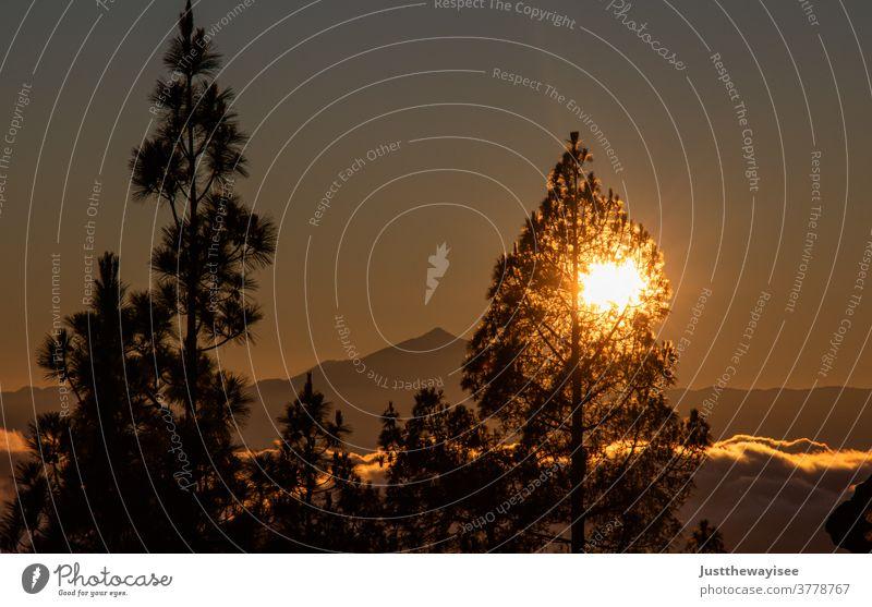 wunderschöner Sonnenuntergang am Teide Landschaft Himmel Wolken Sonnenlicht Außenaufnahme Berge u. Gebirge Teneriffa Sonnenaufgang Sommer Meer Morgendämmerung