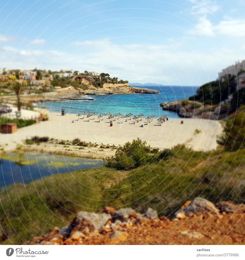 Mallorca | kleiner Strand .... leer ! Spanien Balearen Küste Bucht Leer Corona Reisewarnung Infektionszahlen Quarantäne Ferien & Urlaub & Reisen Meer Sommer